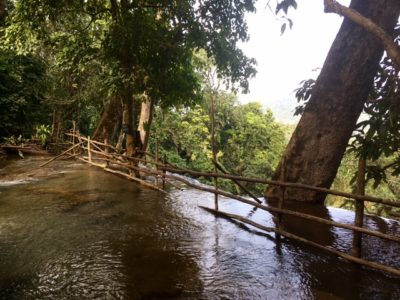 Top of Kuang Si Waterfalls