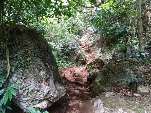 Nice hiking Path