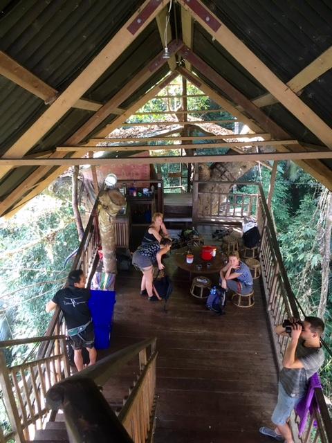 Tree House Experience